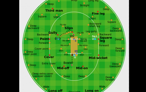 Cricketing terms: Do you know your gully from your googly?