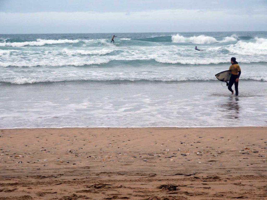 BUCS SURF