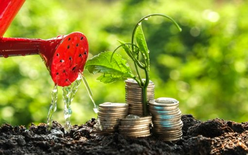 Sustainable Investment – solutions for tomorrow's problems?