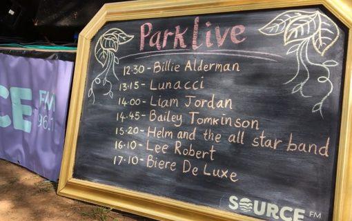 A glimpse into Parklive Festival