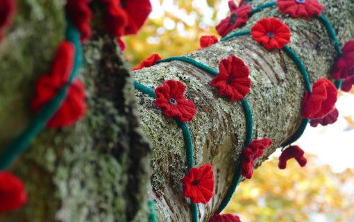 Why is it still important to celebrate Remembrance Day?