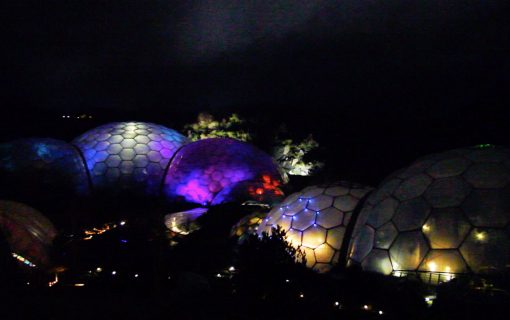 Eden lights up for Christmas
