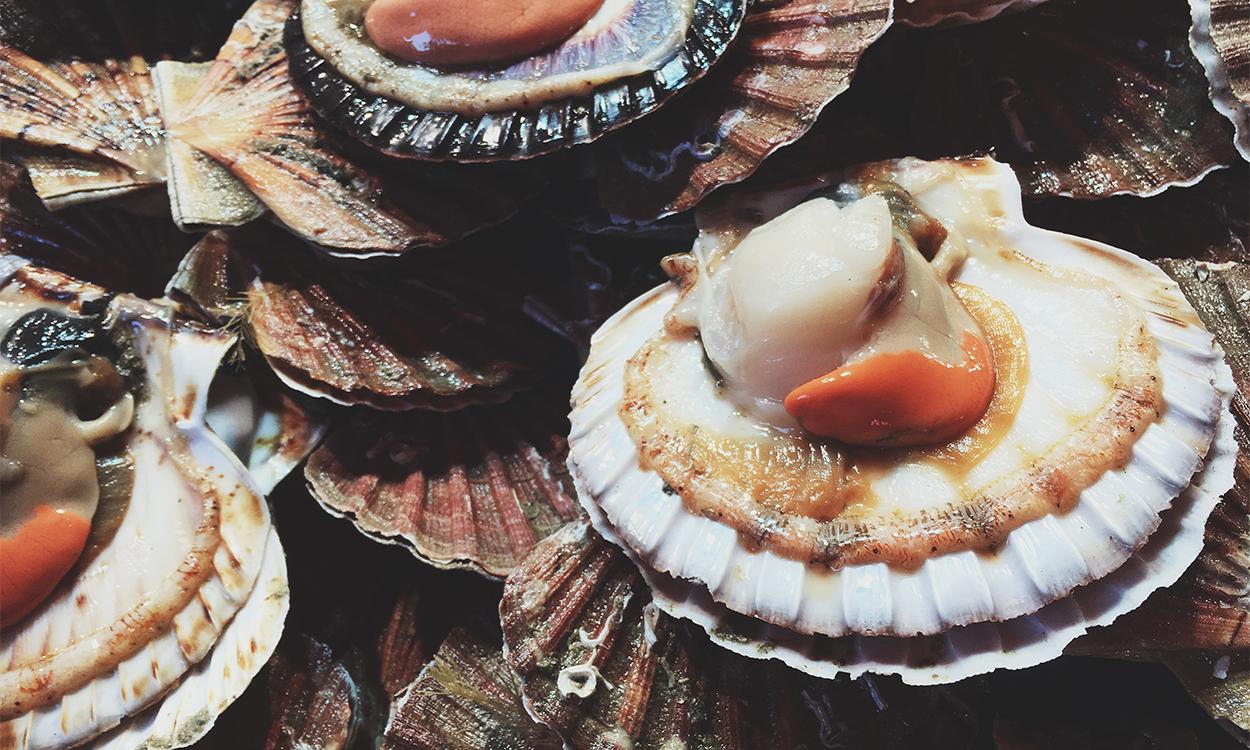 £23m Brexit handout 'won't help' Cornish shellfish industry