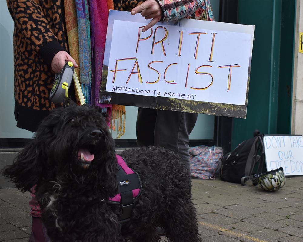 another protesting dog